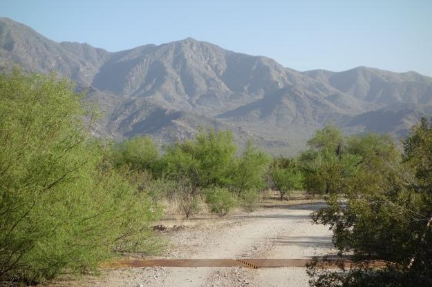 Sunday Church in the Sonoran Desert