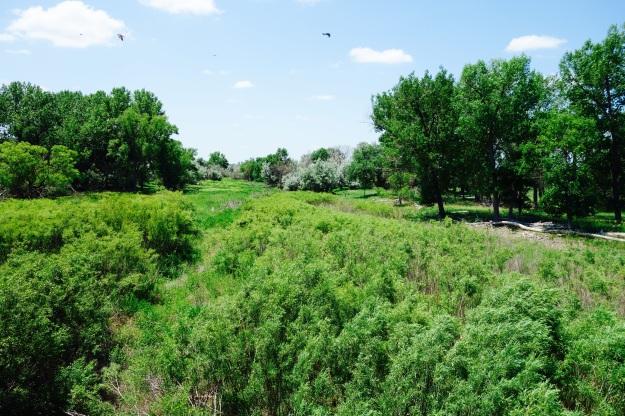 A seasonal riverbed outside Haigler Nebraska