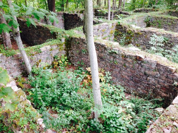 Tannery ruins in Lehigh gorge