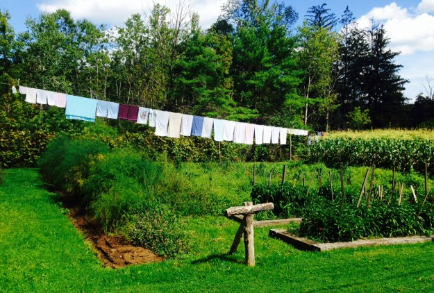 The garden and laundry